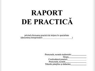 Rapoarte de practica, analize economico-financiare, corectări