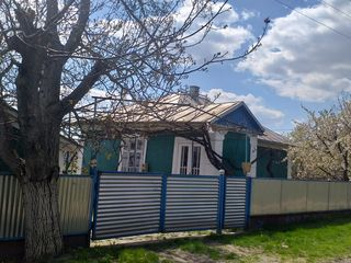 Продаётся частный дом Дондюшанский район ,село Новые Кодряны