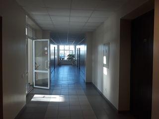 Oficii in sectorul Ciocana, 20-60 m2, prima linie, de la 3 euro/m2