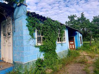 Casa Urgent linga Nistru