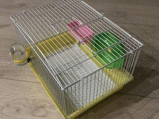 Se vinde colivie pentru hamster este intr-o stare buna la pretul de 200 lei am cumparato cu 350 lei!
