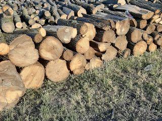 lemne tari de carpan