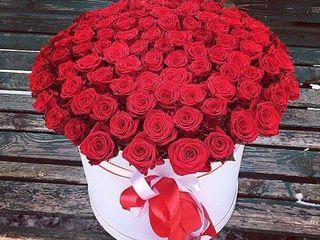 Букеты из роз на 8 марта. Большой выбор букетов из свежих цветов с доставкой!