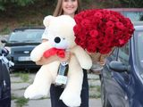Trandafiri,Livrare flori, Surprize la domiciliu