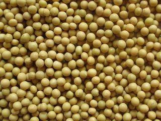 cumpar soie 6  lei