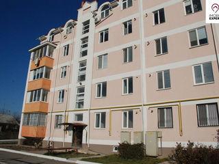Apartament 1 camera, varianta alba, 4/5, Bacioi, Centru - 21 500 €