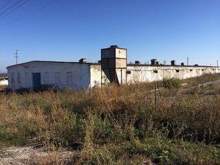 Dam in chirie fabrica de pasari din or Drochia, pe terenul careia se afla spatii pentru producere,
