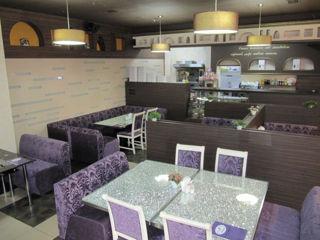Действующий бизнес ресторан и бар с террасой в центре г.Ставчены по ул. Унирий 20