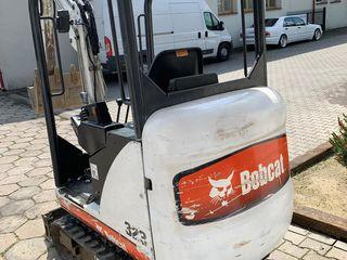 Bobcat323