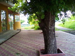 La traseul Chisinau-Orhei