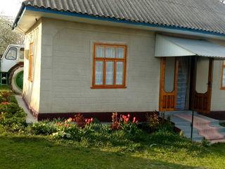 Casa de locuit in r-l Edinet