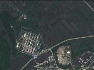 De vinzare 7 hectare pamint sub constructie,1350euro sotca comunicatii ( apa, lumina, gaz) Danceni