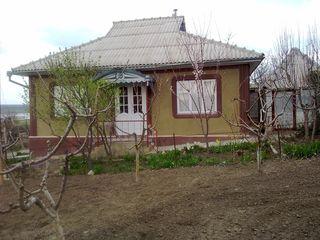 Продается новый дом в центре села Бешалма. Евроремонт. Все комуникации.