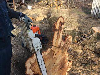 Taierea si despicarea lemnelor de foc in oras si suburbie. deplasarea la domiciliu .
