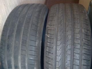 255/50 r19 ,Pirelli Scorpion verde