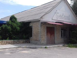 Bar, Alimentara - Anenii Noi, s..Roscani, 68000 euro