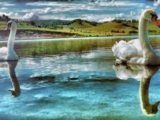 Iaz-Озеро