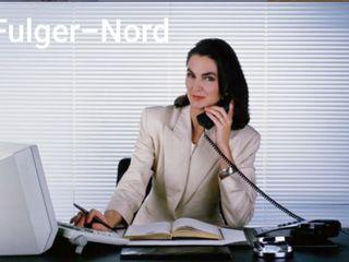 Агентство недвижимости Fulger. http://www.fulgernord