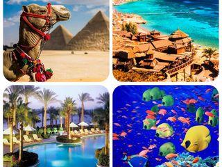 Вылеты из Кишинева в Египет в Хургаду - All - от 260 евро  - на 7 ночей!