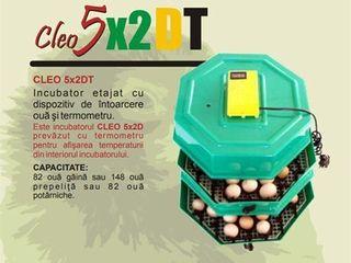 Инкубатор полу-автомат 82 яиц Cleo 5X2DT  livrare gratuita +garantie