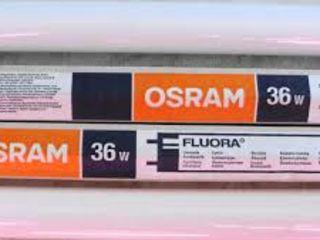 фитолампа osram fluora