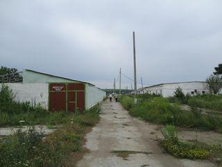 Banca vinde un complex agroindustrial