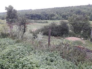 Teren 55 ari, loc.Valea Colonitei, sat.Dolinnoe,16 ari conctructie+39 agricol liga riu si padure !!!