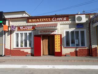 Продаю недвижимость в центре г. Единцы