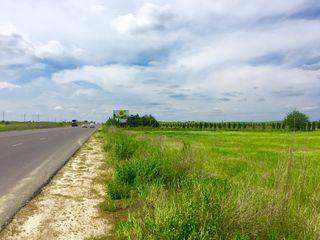 Se Vinde Teren Agricol pe Prima Linie! r-nul Strășeni 64 ari