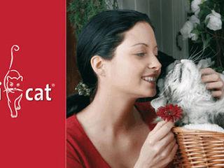 """влажный корм для Кошек.. """" Bewi Cat 0.400 gr """" - 28 лея"""