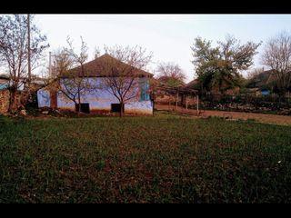Se vinde teren in sayul Molovara Veche