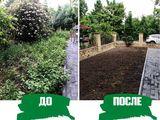 Уборка территории, уход за растениями, газон, полив.