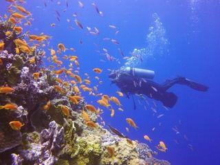 Egipt | Marsa Alam!  O nouă destinație specială!