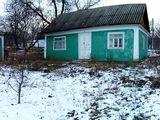 Продается старый дом, с огородом г. Окница, не дорого!