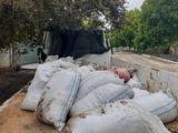 transport de gunoi și hamali