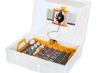 Инкубатор автоматический Теплуша 72 яиц ИБ 12/50 ТАВ/Incubator automat/Питание - 220В/12B/Livrare
