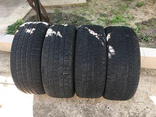 Pirelli r20 255/50