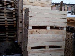 Containere de firma pentru mere