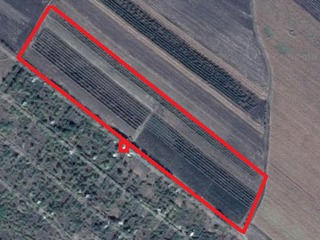 7 ha(vie de masa1,25ha,perj 60sote,mere 2ha restul pamint arabil)+vila cu 2 camere