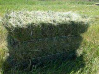 Baloți de fîn (iarbă) urgent (transport gratuit în raza raionului straseni)