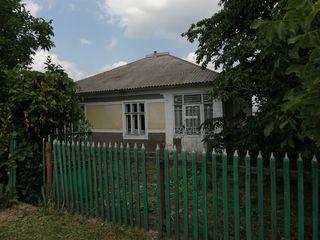 Продаётся дом в селе Цауль
