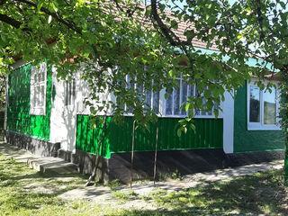 Дом в деревне,при нём 39 соток
