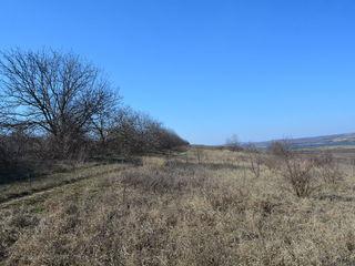 Cumpar teren agricol 10ha 20ha 30ha 40 ha 50ha în afara Mun. Chișnău