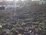 Urgent ! Regiunea Ciorescu, Vind teren cu suprafata de 35 de ari , posibil schimb pe automobil!