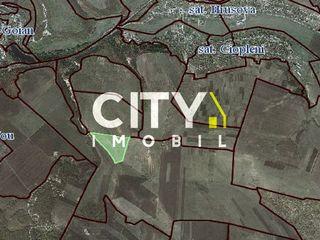 Se vinde teren agricol, Chișinău, Criuleni 14 ha