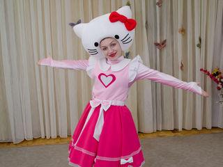 Organizam petreceri. Mascote Disney.Hello Kitty și Minion.