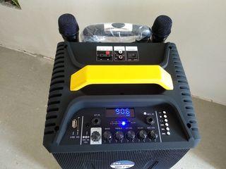 Boxa activa  ,acustica cu baterie cu doua microfoane