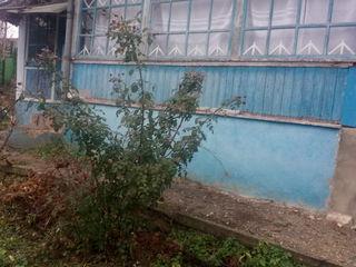 Casa batrineasca cu 8 ari. la 15 km de chisinau.satul Nimoreni.urgent