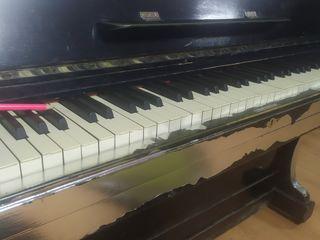Lecții de pian și canto (vocal)