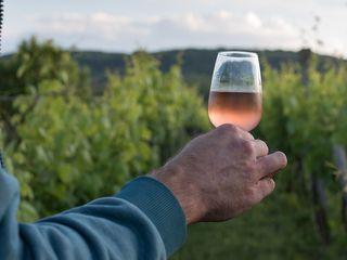 Вино домашнеe. Красное и белое вино. Био 100%, экологический, натуральный.